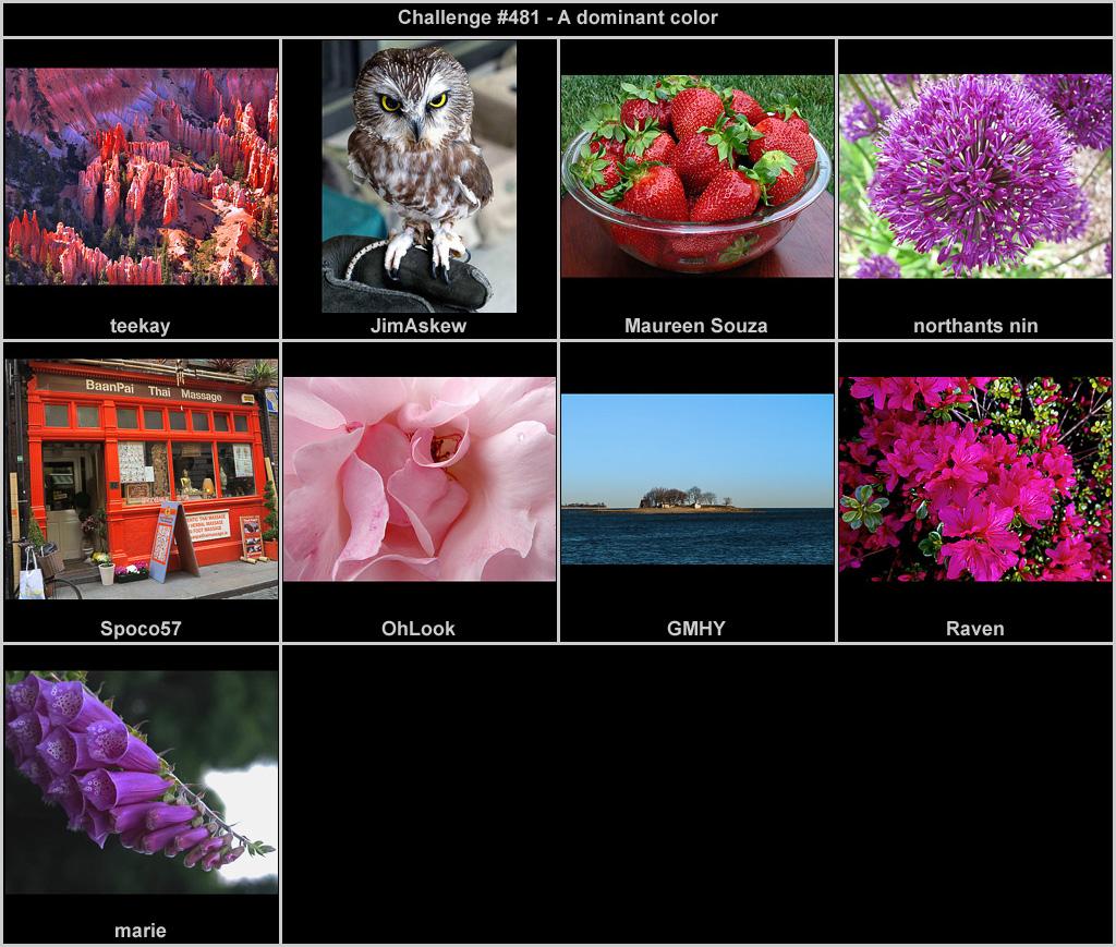 IMAGE: http://rpolitsr.rafaelpolit.com/potngserieschall/481_thumbnails_chronological.jpg