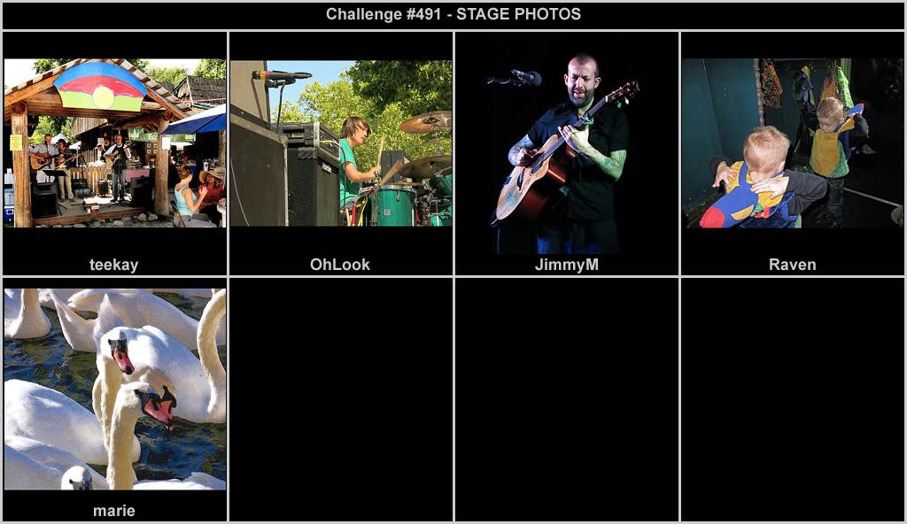 IMAGE: http://rpolitsr.rafaelpolit.com/potngserieschall/491_thumbnails_chronological.jpg