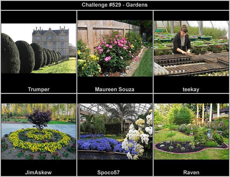 IMAGE: http://rpolitsr.rafaelpolit.com/potngserieschall/529_thumbnails_chronological.jpg
