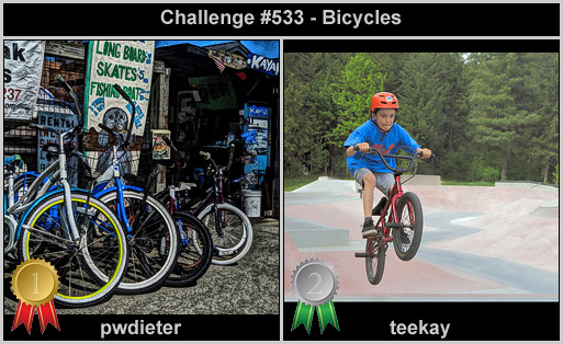 IMAGE: http://rpolitsr.rafaelpolit.com/potngserieschall/533_thumbnails_winners.jpg